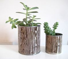 pretty pots for an indoor garden--make your own by reusing cans and wrapping paper