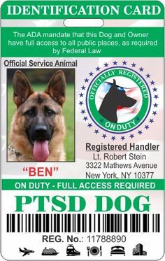 PTSD Service Dog Badge Id >>> Details can be found by clicking on the image. (This is an affiliate link and I receive a commission for the sales) #MyDog
