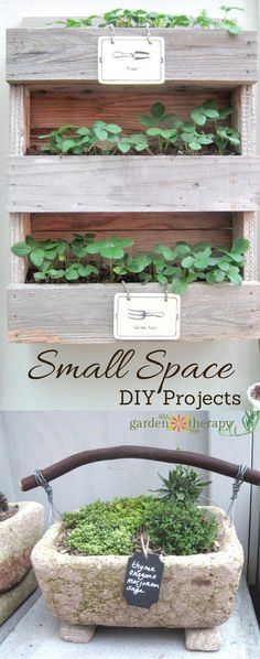Small Space Garden DIY Projects Straight from the Northwest Flower and Garden Show - Garden Therapy - Modern Design Indoor Vegetable Gardening, Small Space Gardening, Container Gardening, Organic Gardening, Gardening Tips, Gardening Vegetables, Organic Farming, Garden Show, Garden Art
