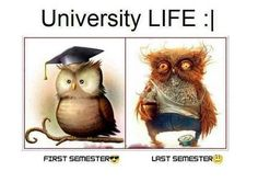 - 20 Funny Quotes About University - EnkiVillage