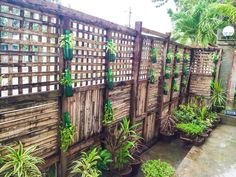 My Little Garden --- My Happy Place
