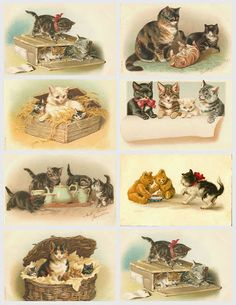 Images of yesteryear: Early Images of cats Vintage Labels, Vintage Ephemera, Vintage Cards, Vintage Postcards, Clip Art Vintage, Free Printable Art, Printable Designs, Vintage Pictures, Vintage Images