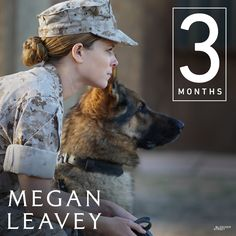 In three months, stars in MEGAN LEAVEY, the incredible true story about a Marine Corporal and her partner, Sgt. In theaters June Police Dogs, Military Police, Army, Megan Leavey, The Incredible True Story, Bleecker Street, Kate Mara, War Dogs, Aggressive Dog
