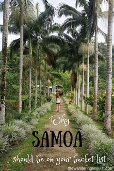 No, Samoa is not just like any other island. I am going to let you know what makes this tiny island nation special, and why you should visit Samoa. Bucket List Destinations, Travel Destinations, Travel Tips, Travel Articles, Travel Advice, Travel Guides, Travel Nursery, Thailand, South Pacific