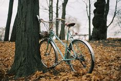 Bicycle in autumn leaves