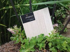Rijeka Oak 33611. Panasphere's TFLaminate surface designs at Monarch Custom Plywood Inc. T. 905.669.6800. Monarch Custom Plywood Inc. is Panasphere Surfaces distributor in Ontario, Canada. Monarchply.com