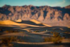 Through the Dunes by Ingo Meckmann on 500px
