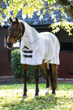 Horseware Collection S/S16: Rambo Dry Rug. Visit www.horseware.com to find your nearest stockist.