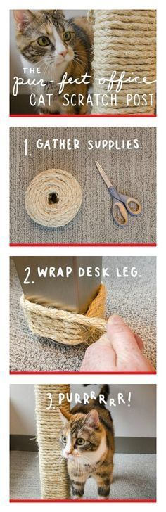 DIY Pet Stuff...  ThisDIY Homemade Cat Scratching Post by Purina was just too darn awesomenot to share! If you have a cat (or a few), they are sure to love this, as is your wallet. And it's so easy to make! All you need is some Sisal Rope, which you can get for cheap here.