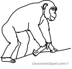 how to draw chimps chimpanzees drawing lessons rajzolás
