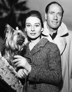 Audrey Hepburn photographed with her husband Mel Ferrer (actor, dialogue coach and film director) and Mr. Famous (her Yorkshire Terrier) at Piazza Trinità dei Monti in Rome (Italy), on January 08, 1960.