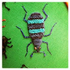 Stumpwork biller. Weevil beetle.