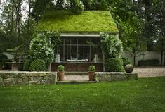 Michael Trapp super mossy roof
