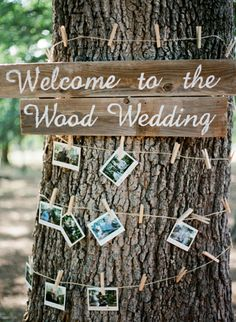 displaying pictures of guests + the couple wrapped around a tree trunk // photo by KrystleAkin.com