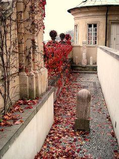 Prague in Autumn: Rust-Colored Leaves in Prague