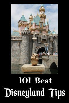 Check out this list of 101 Disneyland Tips. There are a lot of things on this list I didn't know! .