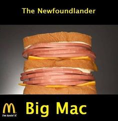 Detoxify Body, Stop Disease, Reverse Aging, and Improve Health Mexican Words, Meanwhile In Canada, Redneck Humor, Redneck Games, Redneck Party, How To Make Sandwich, Tasty, Yummy Food, Big Mac