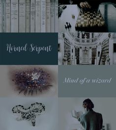 """Ilvermorny Aesthetics: Horned Serpent """"The Horned Serpent is said to represent the mind of a wizard, and favours scholars. Because of that whole aura, it's easy to imagine Horned Serpent students remaining a little aloof from their brethren."""""""