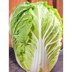 Michihili Chinese Cabbage Seeds - Heirloom Seeds: Sustainable Seed Company 70 Days great for stirfry also good for Kim -Chi. Cabbage Plant, Cabbage Seeds, Asian Vegetables, Organic Vegetables, Oriental, Chinese Cabbage, Seeds For Sale, Backyard Farming, Organic Seeds