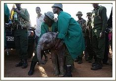 The rescue of Mbegu, who at two months old survived being stoned and stabbed...