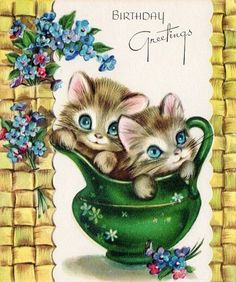 birthday wishes from kitties with forget me nots