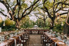 Destination Wedding, Wedding Venues, Wedding Ideas, Flower Decorations, Table Decorations, July Wedding, Wine Country, Videography, South Africa