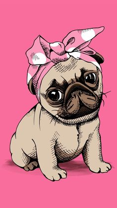 DesPUGito im not a taco im a pugburrito everybody say im smart but im kinda stupido but its ok cuse im super cute