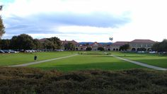 a picture I took of the @Stanford oval while doing my occasional hardcore cycling workout! so beautiful :P