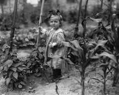 Sweet Little Girl Tot In Garden 1800s 8x10 Reprint Of Old Photo
