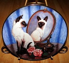 plates with cats on | ... -Blue-Eyes-Siamese-Twins-Collectible-Cat-Daphne-Baxter-Kitten-Plate