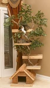 Pet Tree Houses' Lifelike Mature Large Cat Tree House is a bit different from these standard models in that an actual tree is actually part of the design and intertwines itself amongst the platforms of it. Cool Cat Trees, Cool Cats, Cat Trees Diy Easy, Cat Tree Designs, Large Cat Tree, Cat Tree House, Tree Houses, Kitty House, Dog Houses