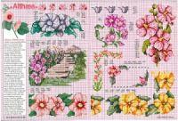 "ru / tymannost - Альбом ""Encyclopedie du point de croix ( Fleurs arbres et feuilles )"" Cross Stitch Rose, Projects To Try, Russia, Napkins, Gallery, Flowers, Leaves, Towels, Dinner Napkins"