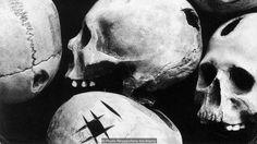 Kuvahaun tulos haulle skulls