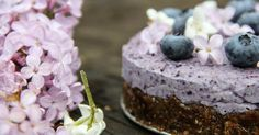Blueberry Chia Seed Cashew Cake I haven't made it yet, but I am sure its delicious! Desserts Crus, Raw Desserts, Delicious Desserts, Yummy Food, Cake Recipes For Kids, Raw Food Recipes, Sweet Recipes, Dessert Recipes, Raw Cake