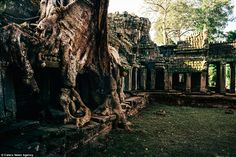 The well-known Ta Prohm temple was made even more famous by its appearance in the Tomb Raider film