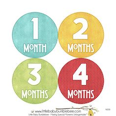 Monthly Baby Stickers Neutral Monthly by LittleBabyBumblebee, $8.00