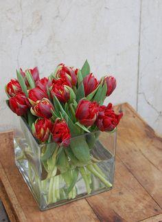 Centro cuadrado con tulipanes rojos #tulipanes #tulipán #nosgustaelrojo #moonflowerartefloral