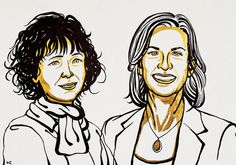Emmanuelle Charpentier and Jennifer Doudna reprogrammed the bacterial immune response into one of the most popular tools for genetics and molecular biology. Marie Curie, Nobel Prize In Chemistry, Human Embryo, Nobel Prize Winners, Academy Of Sciences, Scientific American, Life Science, Science Space, Small Kitchens