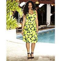 Lemon Print Dress - Large Size Clothing - www.plussizedglamour.co.uk