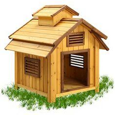 Pet Squeak Bird Dog House | Wayfair