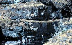 Inca rope bridge.