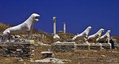 Lions of Delos,Greece