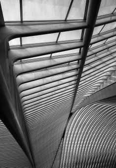 Liegé Railway Station by Andreas Paehge, Organic Architecture, Contemporary Architecture, Amazing Architecture, Architecture Details, Interior Architecture, Architectural Pattern, Architectural Elements, House Furniture Design, Commercial Interiors