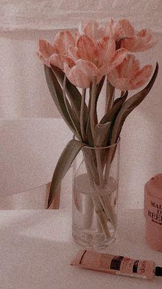 Peach Aesthetic, Flower Aesthetic, Aesthetic Collage, Aesthetic Vintage, Iphone Wallpaper Tumblr Aesthetic, Aesthetic Pastel Wallpaper, Aesthetic Backgrounds, Aesthetic Wallpapers, Soft Wallpaper