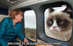 Welcome to #Neuland. Now go home! #merkel #grumpycat #meme #lol