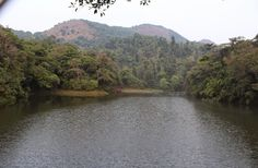 JJ'S TRAVEL TRACK: Coorg : One day visit to ' Scotland of india '