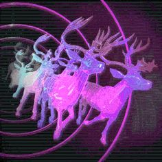 fullertj:8 tiny reindeer in the space-time continuum
