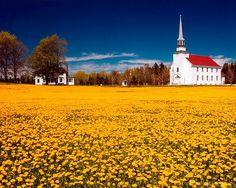 Do I Need Travel Health Insurance Old Time Religion, Cabot Trail, Cape Breton, Old Churches, Nova Scotia, Taj Mahal, Beautiful Places, National Parks, Places To Visit