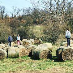 A természet játszótere a #kecskevilag -ban. Playground in the nature. #slowlivingwithkids #fivesneakers #wecollectmemories #emlékeketgyűjtünk #5tornacsuka Playground, Nature, Travel, Instagram, Children Playground, Naturaleza, Viajes, Destinations, Traveling