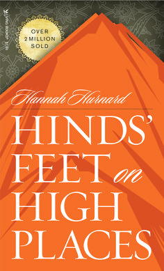 "Such a good book on God's endless pursuit of His cherished ""Much-Afraid""s.  Hinds Feet on High Places by Hannah Hurnard"